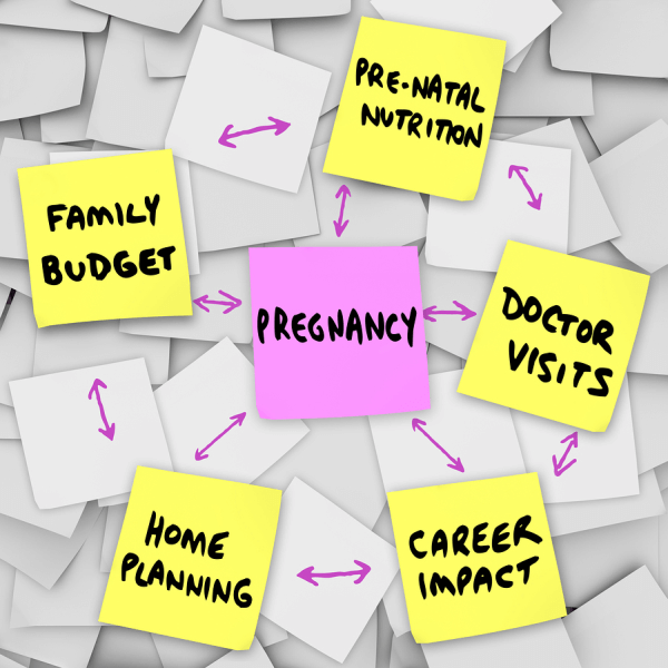 planning-pregnancy-prepared financially mentally physically image