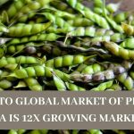 How To Global Market of Pigeon Pea Is 12x Growing Market?